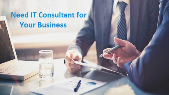 Need of IT Consultant for your Business